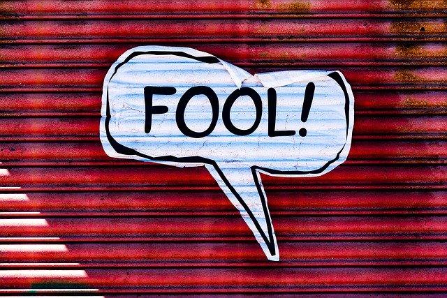 fool-4199719_640